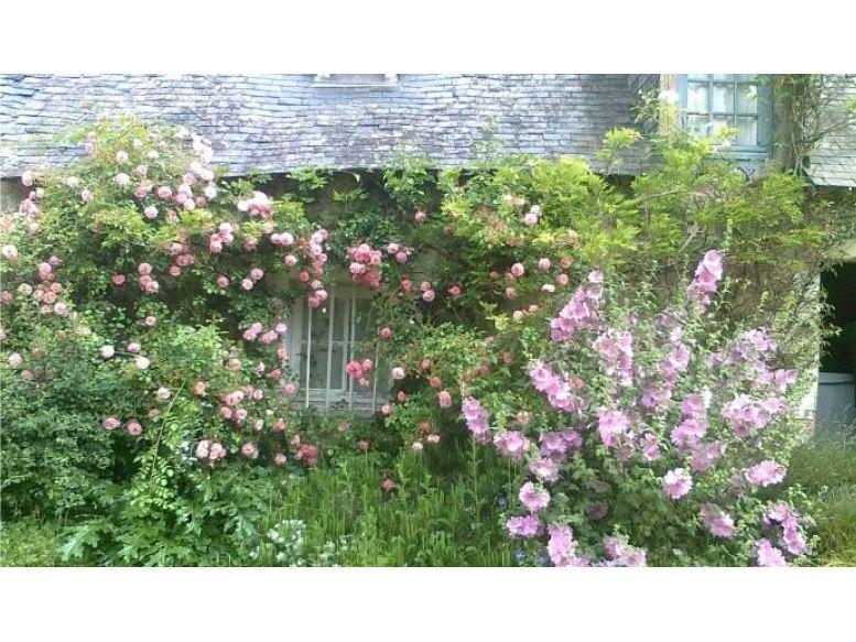 Vends maison campagne dans la Sarthe terrain 1,3Ha, 3chambres - La Chapelle-aux-Choux (72)