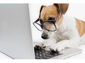 Je propose de l'assistance informatique à domicile en région lyonnaise