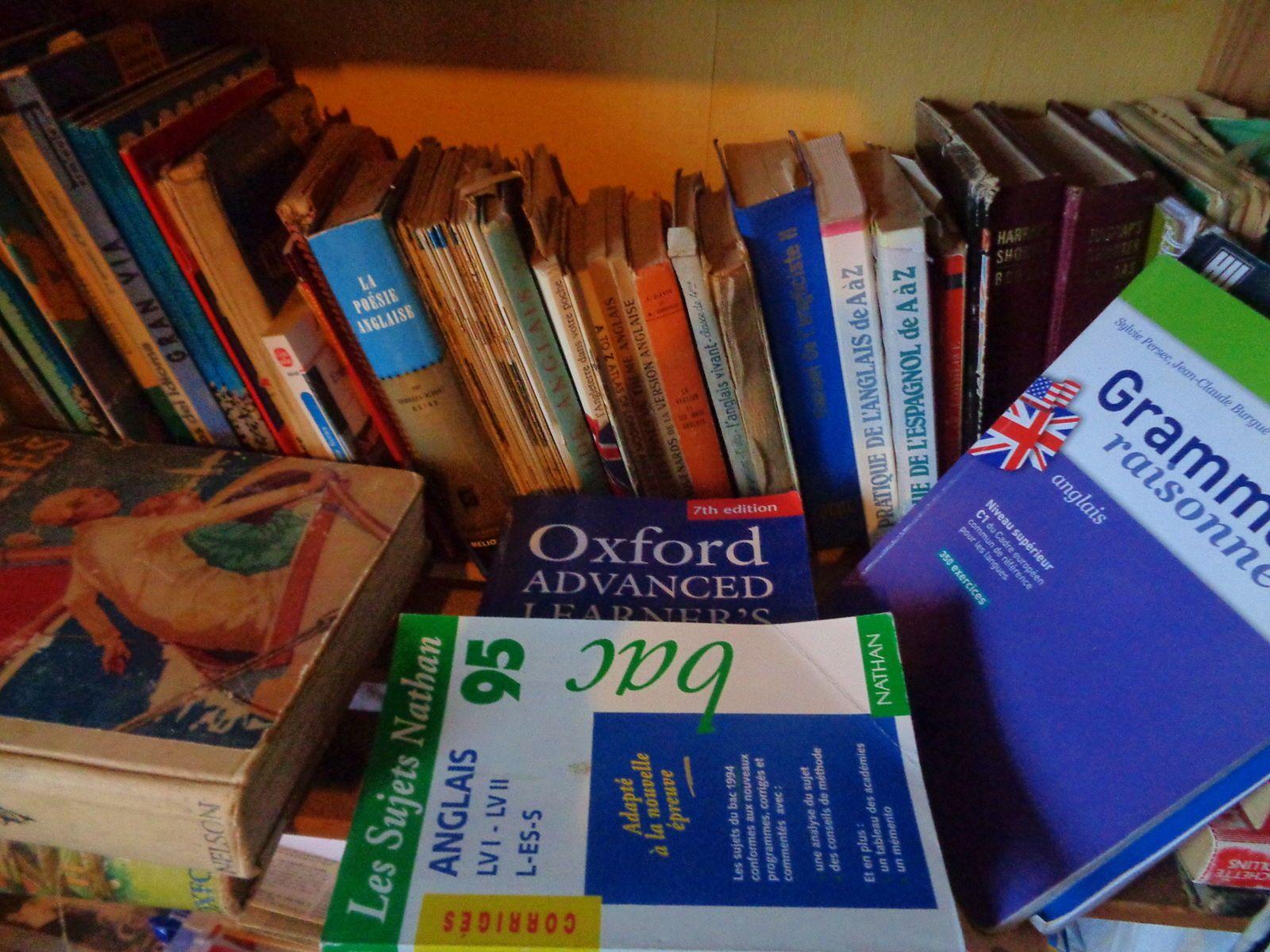 Livres études anglais et dictionnaires Harrap's
