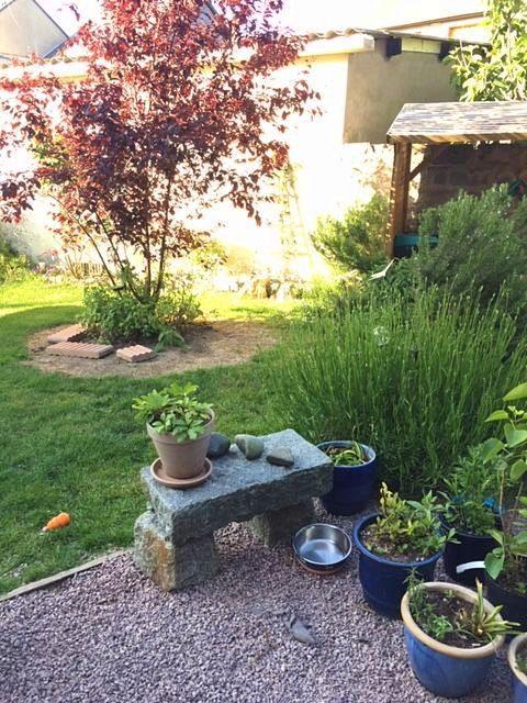 Loue maison - 3chambres, 5couchages à St Malo (35) animaux bienvenus