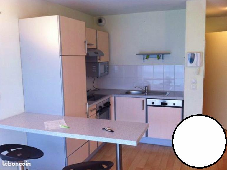 Loue appartement T2meublé de 37m², proche CHU - Clermont-Ferrand (63)
