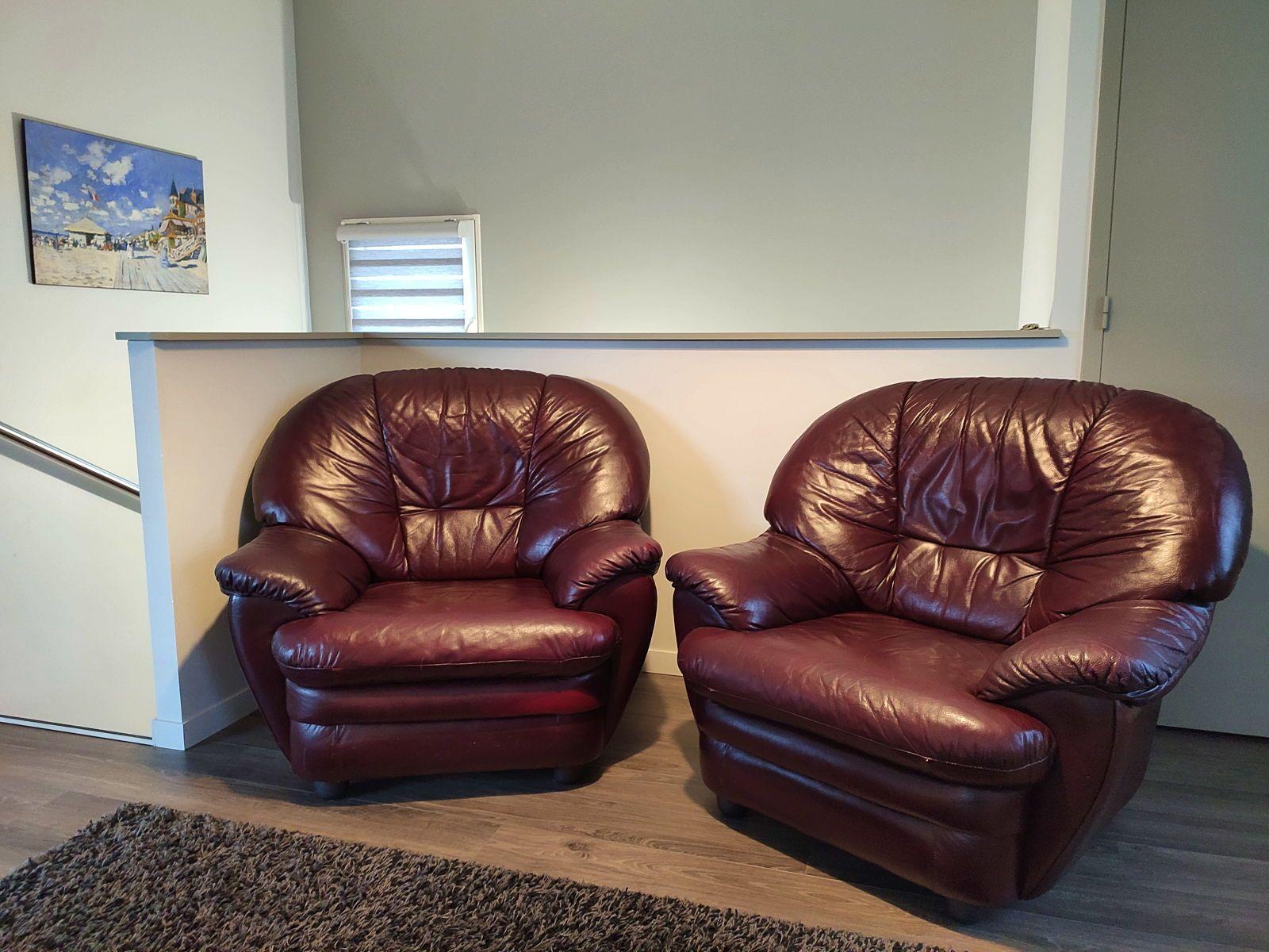 Vends 2Fauteuils de Salon en Cuir