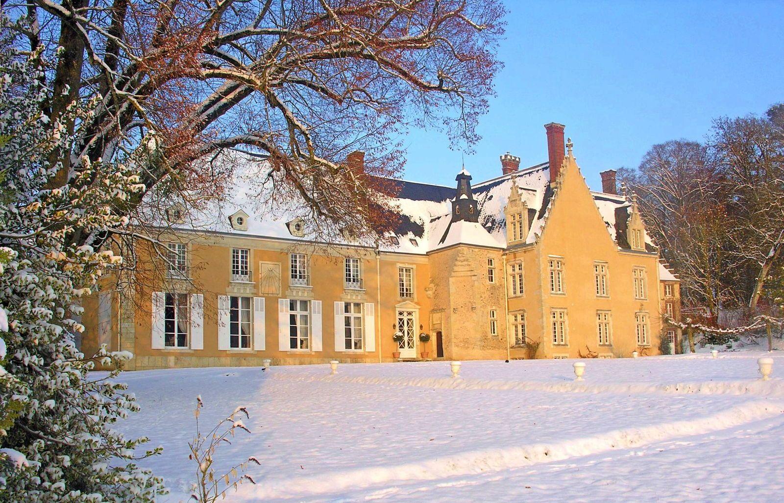 Propose location château de famille, pour fêter Noël ou Nouvel An - 8chambres 16couchages