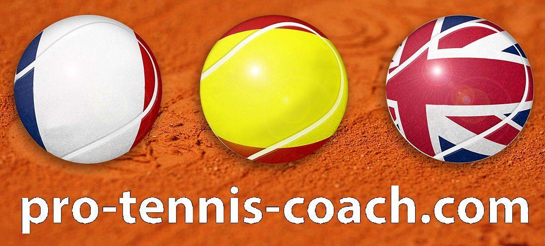 Propose cours/stages de Tennis et soutien scolaire-linguistique