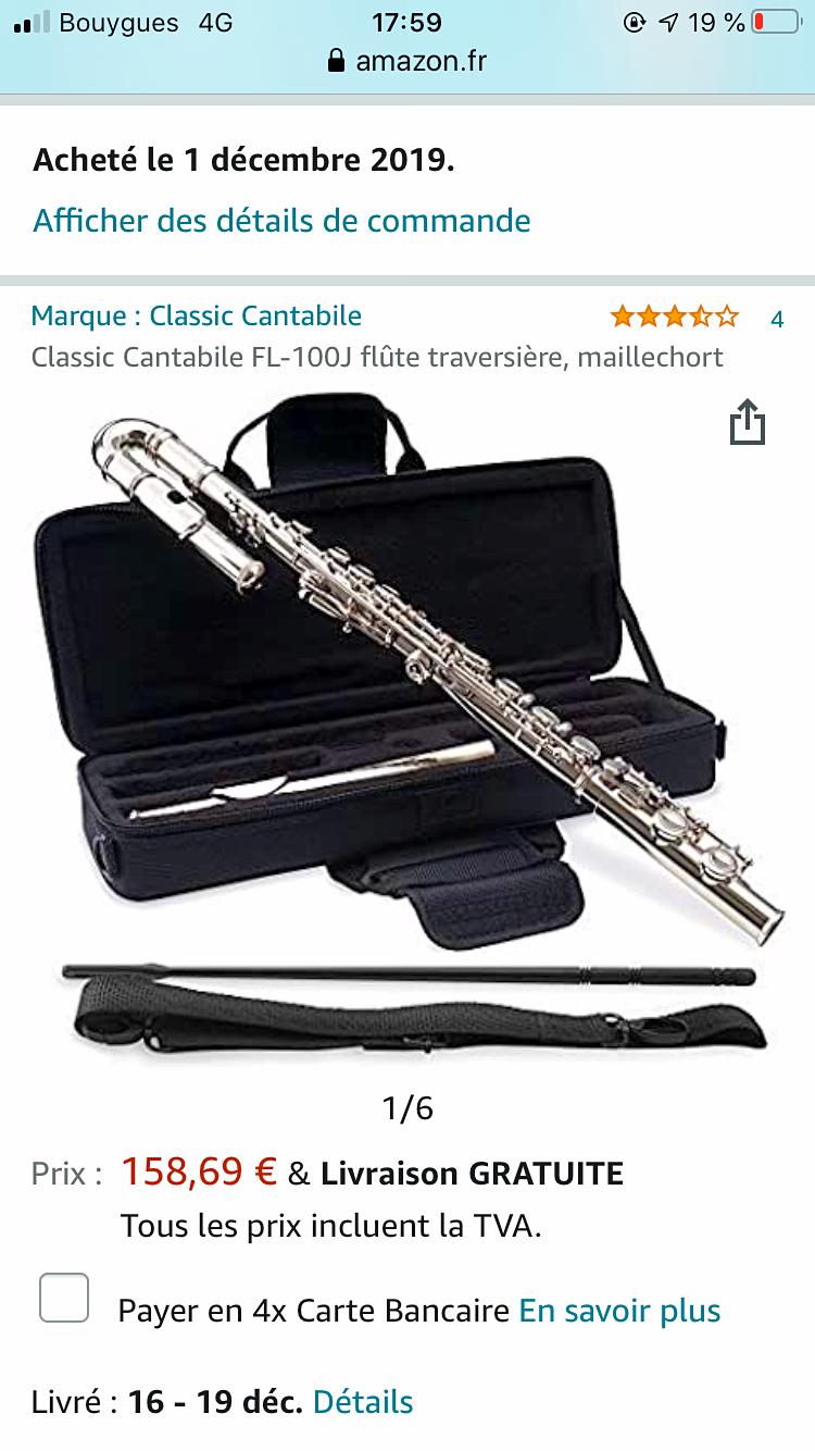 Vends flûte traversière enfant