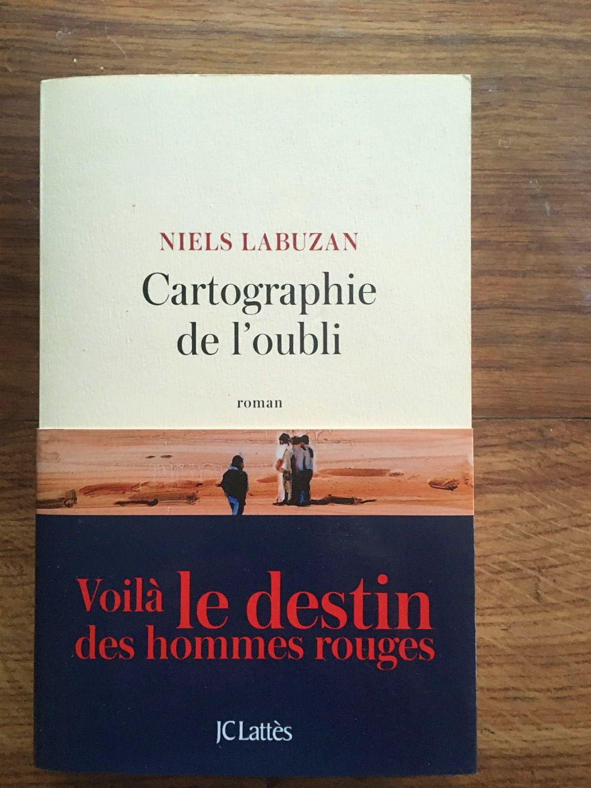 Vends livre Cartographie de l'oubli de Niels Labuzan bon état