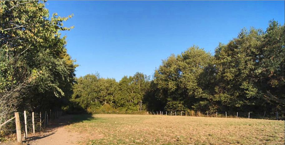 Vends terrain 1680m² La Chapelle Mouliere